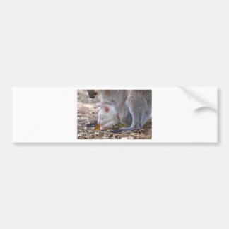 Adesivo Para Carro Joey do albino no bolso