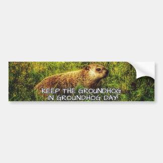 Adesivo Para Carro Mantenha o Groundhog no autocolante no vidro