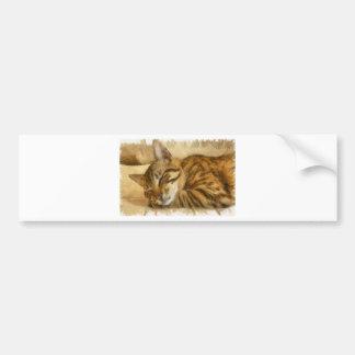 Adesivo Para Carro Mentira deixada dos gatos do sono
