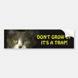 Adesivo Para Carro O gato abundante diz não cresce acima Meme