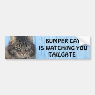 Adesivo Para Carro O gato abundante está olhando o meme da BAGAGEIRA