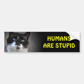 Adesivo Para Carro O gato do bigode diz que os seres humanos são