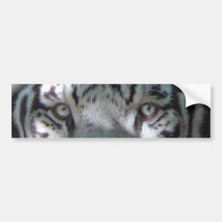 Adesivo Para Carro Olhos brancos do tigre