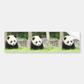 Adesivo Para Carro Panda do bebê