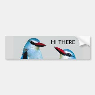 Adesivo Para Carro Pássaros África do Sul do martinho pescatore