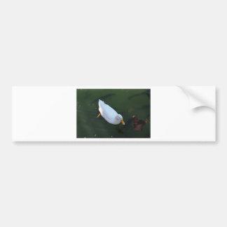 Adesivo Para Carro Pato branco