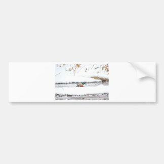 Adesivo Para Carro Pato do inverno