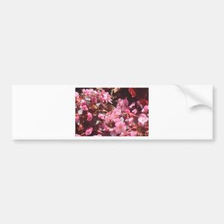 Adesivo Para Carro produtos florais