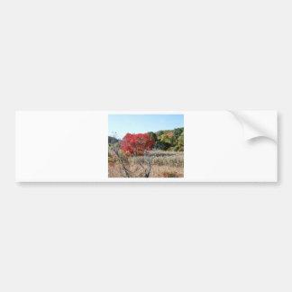 Adesivo Para Carro Tag do folhagem de outono