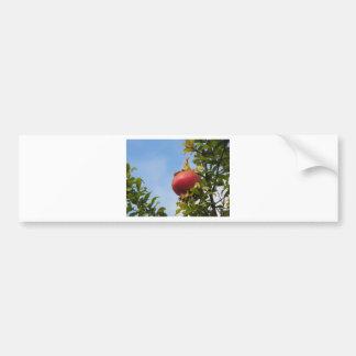 Adesivo Para Carro Única fruta vermelha da romã na árvore nas folhas