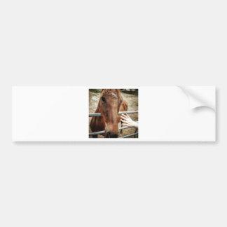 Adesivo Para Carro Vida do cavalo