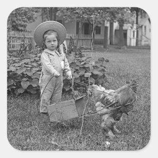 Adesivo Quadrado 1880's carro adorável da menina e do galo no