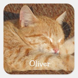 Adesivo Quadrado A foto do animal de estimação personalizado