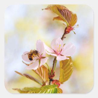 Adesivo Quadrado Abelha em uma flor da cereja