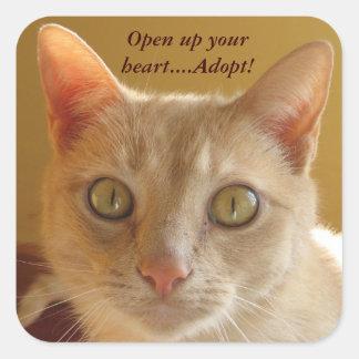 Adesivo Quadrado Abra seu coração….Adote!