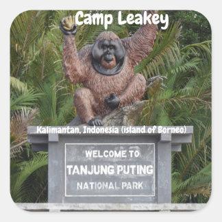 Adesivo Quadrado Acampamento Leakey Tanjung que pôr o parque