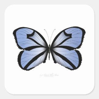 Adesivo Quadrado Aleta azul gigante da borboleta 5 azuis