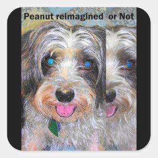 Adesivo Quadrado amendoim o cão do salvamento