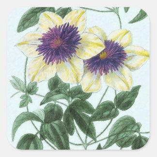 Adesivo Quadrado Arte da flor do Clematis
