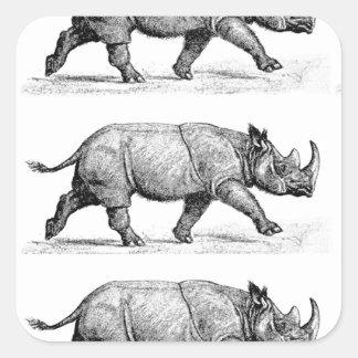 Adesivo Quadrado Arte Running dos Rhinos