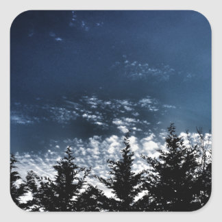 Adesivo Quadrado Árvores noroestes da skyline