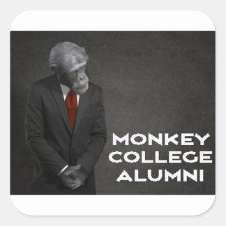 Adesivo Quadrado Associação de alunos da faculdade do macaco