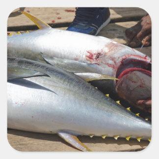 Adesivo Quadrado atum amarelo das aletas