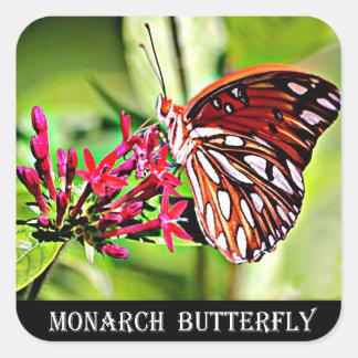 Adesivo Quadrado Borboleta de monarca de Vermont