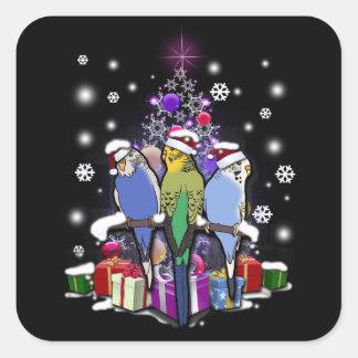 Adesivo Quadrado Budgerigars com presente e flocos de neve do Natal