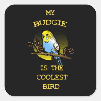 Adesivo Quadrado Budgie é o pássaro o mais fresco