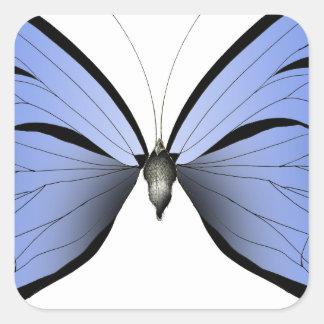 Adesivo Quadrado Caçador azul do Azure da borboleta 2