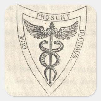 Adesivo Quadrado Caduceus no protetor
