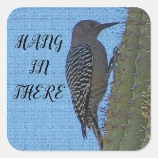 Adesivo Quadrado Cair lá no pica-pau que pendura o cacto do Saguaro