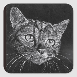 Adesivo Quadrado Cara do gato meu desenho do segundo grau