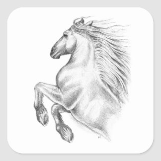 Adesivo Quadrado Cavalo andaluz poderoso