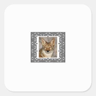 Adesivo Quadrado chacal em um quadro