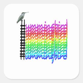 Adesivo Quadrado Colibri colorido