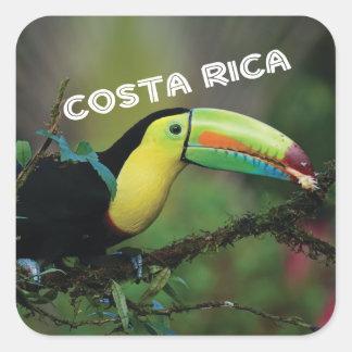 Adesivo Quadrado Costa Rica com Toucan colorido
