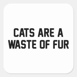 Adesivo Quadrado Desperdício dos gatos da pele