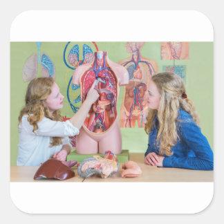 Adesivo Quadrado Dois estudantes que aprendem o corpo humano modelo
