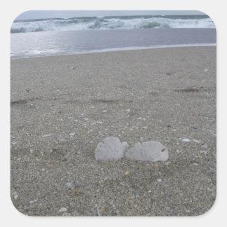 Adesivo Quadrado Dólares de areia da praia