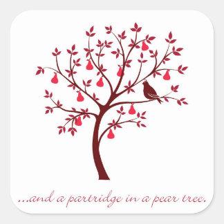 Adesivo Quadrado E uma perdiz em uma árvore de pera