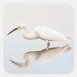 Adesivo Quadrado Egret na lagoa imóvel