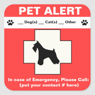 Adesivo Quadrado Emergência alerta do animal de estimação