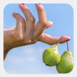 Adesivo Quadrado Entregue guardarar duas peras verdes de suspensão