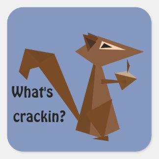 Adesivo Quadrado Esquilo de Brown o que é Crackin?
