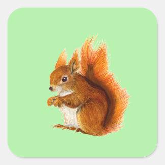 Adesivo Quadrado Esquilo vermelho pintado na arte dos animais