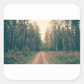 Adesivo Quadrado Estrada de terra de Brown entre o dia com folhas