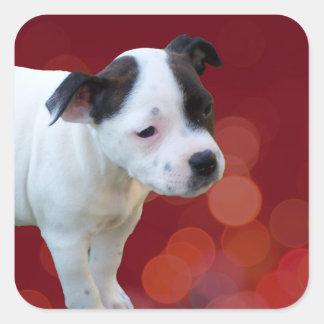 Adesivo Quadrado Filhote de cachorro preto e branco de