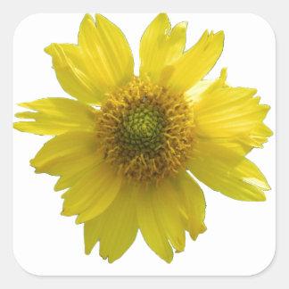 Adesivo Quadrado Flor amarela